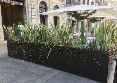 conillas-jardineria-diseno-terraza-y-decoracion-floral-restaurante-bodega-torres-barcelona-01