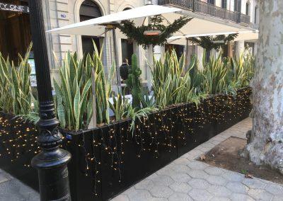 conillas-jardineria-diseno-terraza-y-decoracion-floral-restaurante-bodega-torres-barcelona-03
