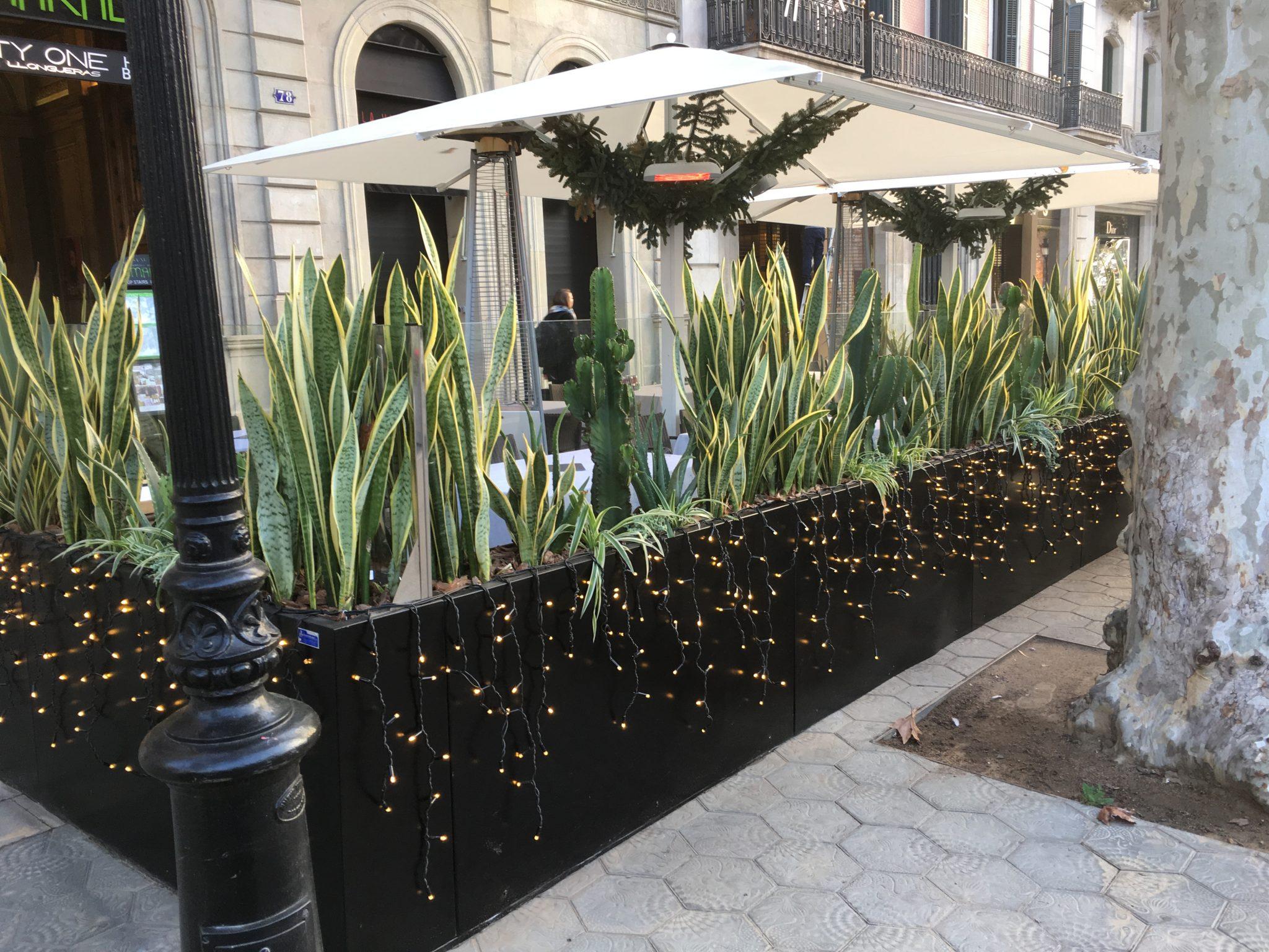 Conillas Jardineria Diseno Terraza Y Decoracion Floral