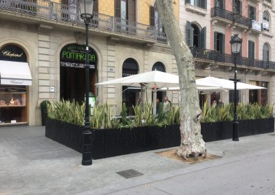 conillas-jardineria-diseno-terraza-y-decoracion-floral-restaurante-bodega-torres-barcelona-13