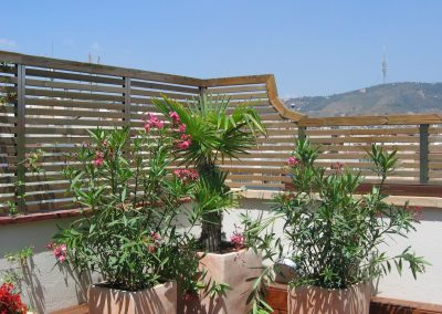 conillas-paisajismo-jardinieria-proyecto-paisajistico-en-terraza-barcelona-y-contruccion-pergola-madera-iroco-y-plantacion-vegetal-barcelona-01