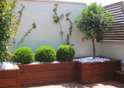 conillas-paisajismo-jardinieria-proyecto-paisajistico-en-terraza-barcelona-y-contruccion-pergola-madera-iroco-y-plantacion-vegetal-barcelona-07