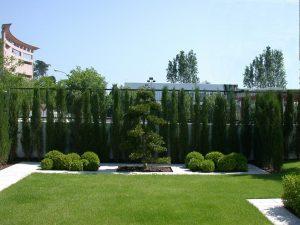 Conillas Paisajismo Y Jardineria Diseno Jardin Y Contruccion Piscina - Diseo-de-jardines-con-piscina
