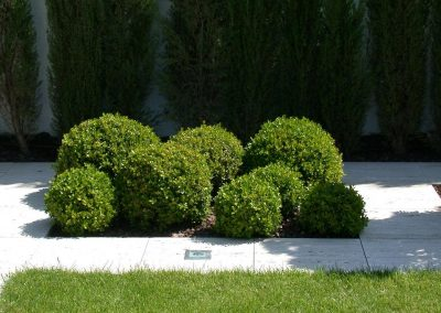 conillas-paisajismo-y-jardineria-diseno-jardin-y-contruccion-piscina-y-pagoda-04