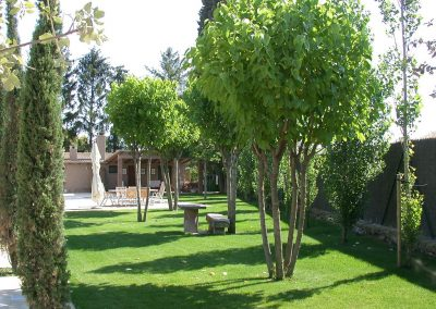 conillas-paisajismo-y-jardineria-diseno-paisajistico-y-construccion-jardin-particular-con-piscina-provincia-de-lleida-00-09