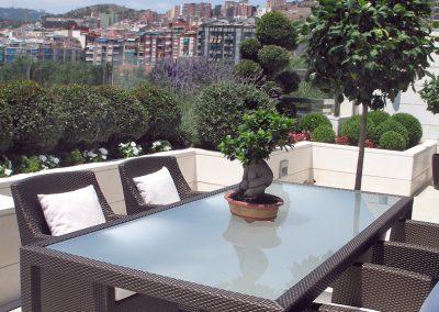 Diseño y ajardinamiento de terraza en Gracia