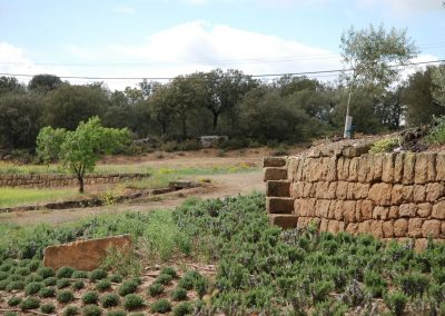 conillas-paisajismo-y-jardineria-estudio-del-espacio-diseno-paisajistico-y-ejecucion-proyecto-paisajistico-era-08