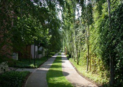 conillas-paisajismo-y-jardineria-jardin-comunidad-de-propietarios-barcelona-04