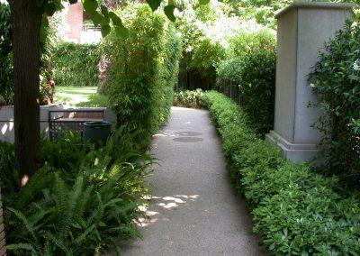 conillas-paisajismo-y-jardineria-jardin-comunidad-de-propietarios-barcelona-05