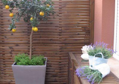 conillas-paisajismo-y-jardineria-terraza-barcelona-arboles-frutales-plantacion-vegetal-06