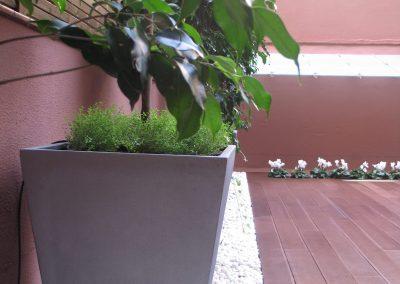 conillas-paisajismo-y-jardineria-terraza-barcelona-arboles-frutales-plantacion-vegetal-09