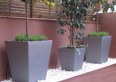 conillas-paisajismo-y-jardineria-terraza-barcelona-arboles-frutales-plantacion-vegetal-10