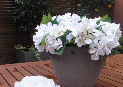 conillas-paisajismo-y-jardineria-terraza-barcelona-arboles-frutales-plantacion-vegetal-16