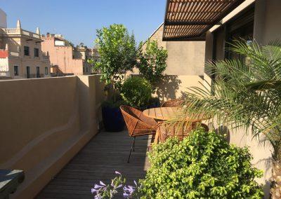 1-conillas-paisajismo-y-jardineria-proyecto-terraza-en-paseo-de-gracia