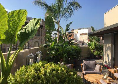 15-conillas-paisajismo-y-jardineria-proyecto-terraza-en-paseo-de-gracia