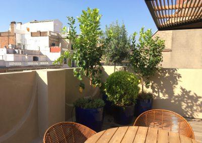 2-conillas-paisajismo-y-jardineria-proyecto-terraza-en-paseo-de-gracia