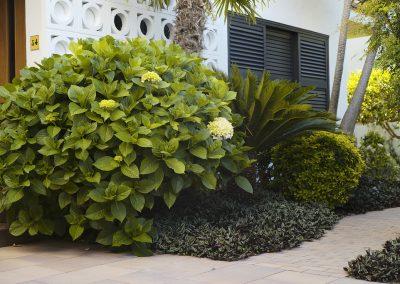 conillas-jardineria-proyectos-jardin-pineda-8