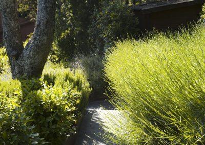 conillas-jardineria-y-paisajismo-proyecto-de-paisajismo-de-una-propiedad-privada-en-Sant-Gervasi-15